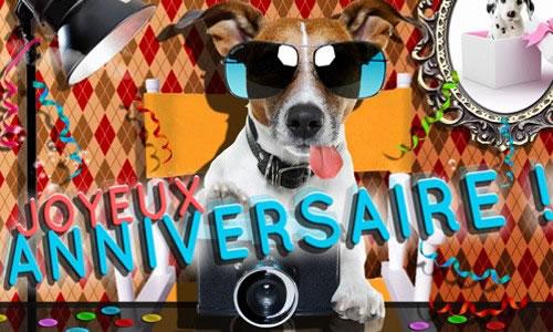 Chien dr le de prendre une photo joyeux anniversaire images de joyeux anniversaire - Image animaux gratuite ...
