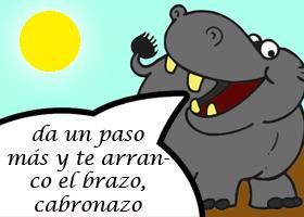 El hipopótamo es el animal más peligroso de África