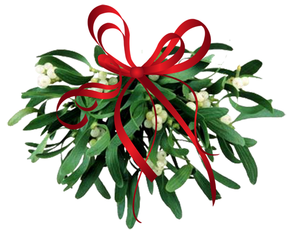 mistletoe+leaves.png