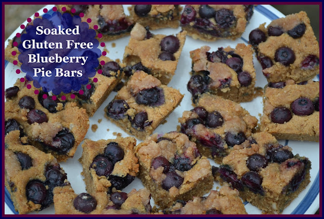 Soaked Gluten Free Blueberry Pie Bars - Just Take A Bite