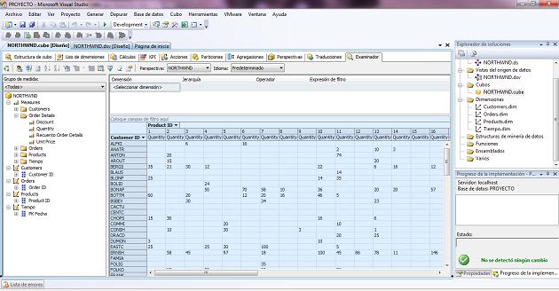 Vista de datos en el Cubo Olap
