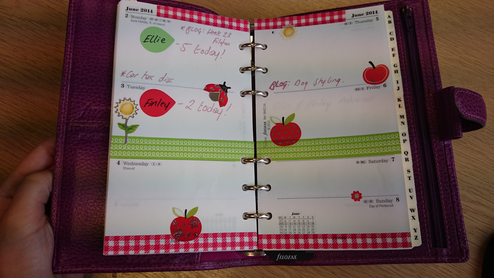 filofax personal finsbury raspberry week 23 decoration washi tape blog post planner