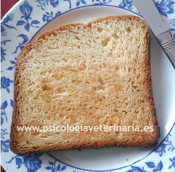 Pan tipo bimbo, igual pero sin gluten