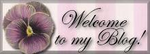 Tervetuloa blogiini