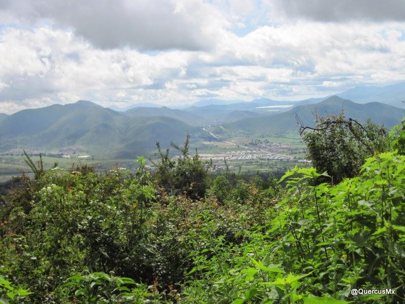 Cerro las Latillas y Cerro la Cruz desde el Cerro Totoltepec