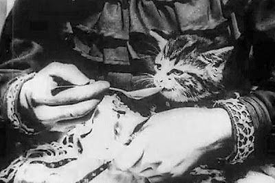 The Sick Kitten (1903)