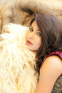 Pakistani Model Beautiful Ayyan Ali Awesome Photo Shoot 2013