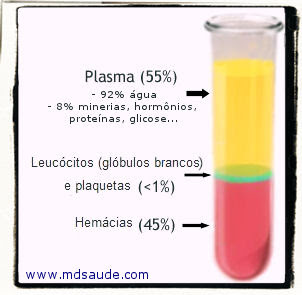 Plasma - plasmaferese