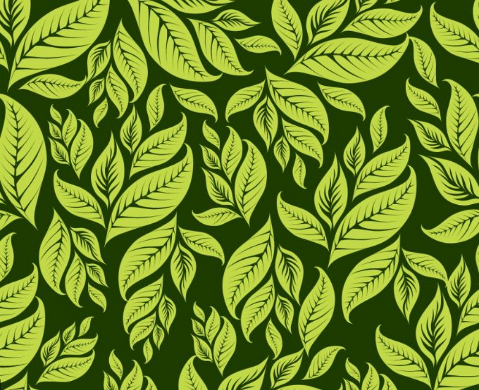 Download image Green Floral Pattern Vector PC, Android, iPhone and ...