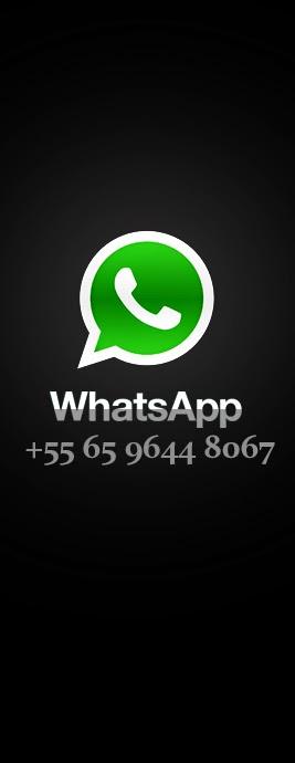 ✔ WhaTsApp