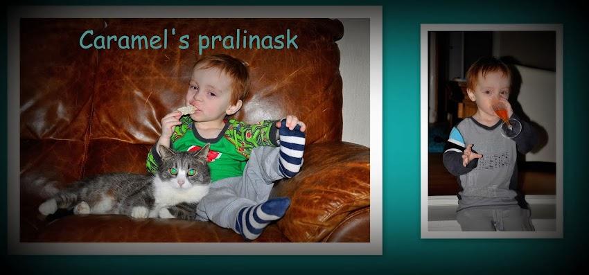 Caramel's pralinask