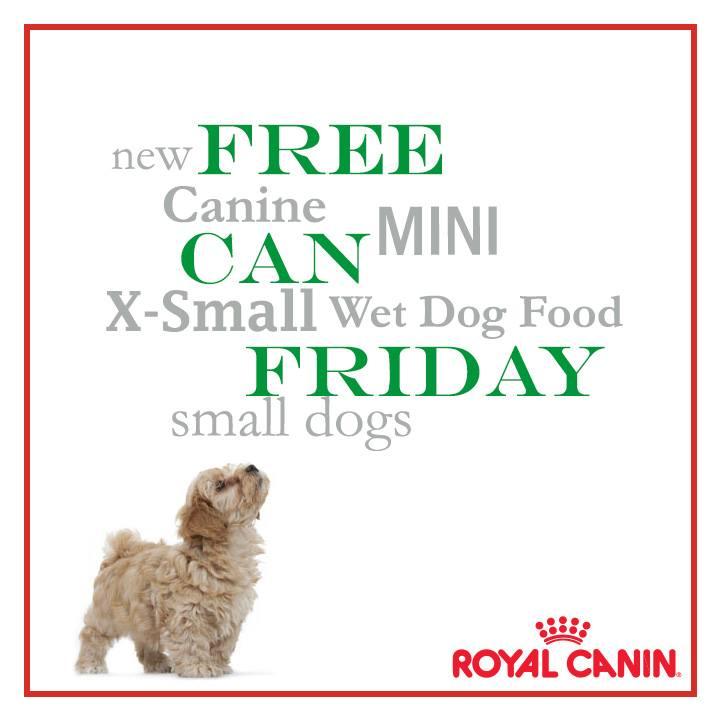 Small dog mall coupon code