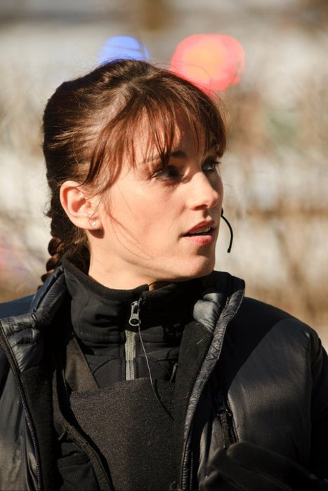 Amy jo johnson argentina flashpoint canal 9 argentina for Johnson argentina