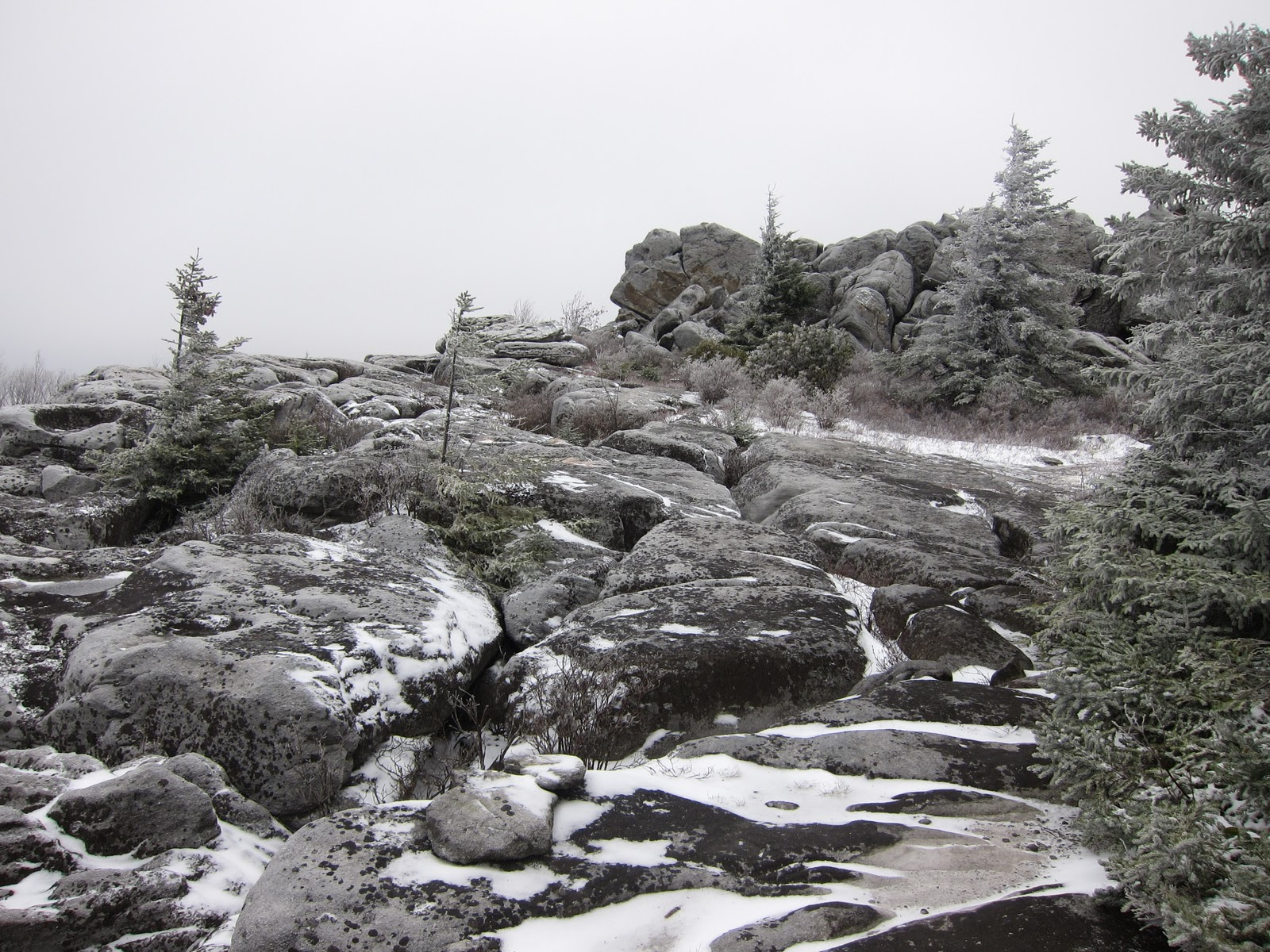 Stumbles Off the Map: Dolly Sods: Rocky Ridge Loop ...