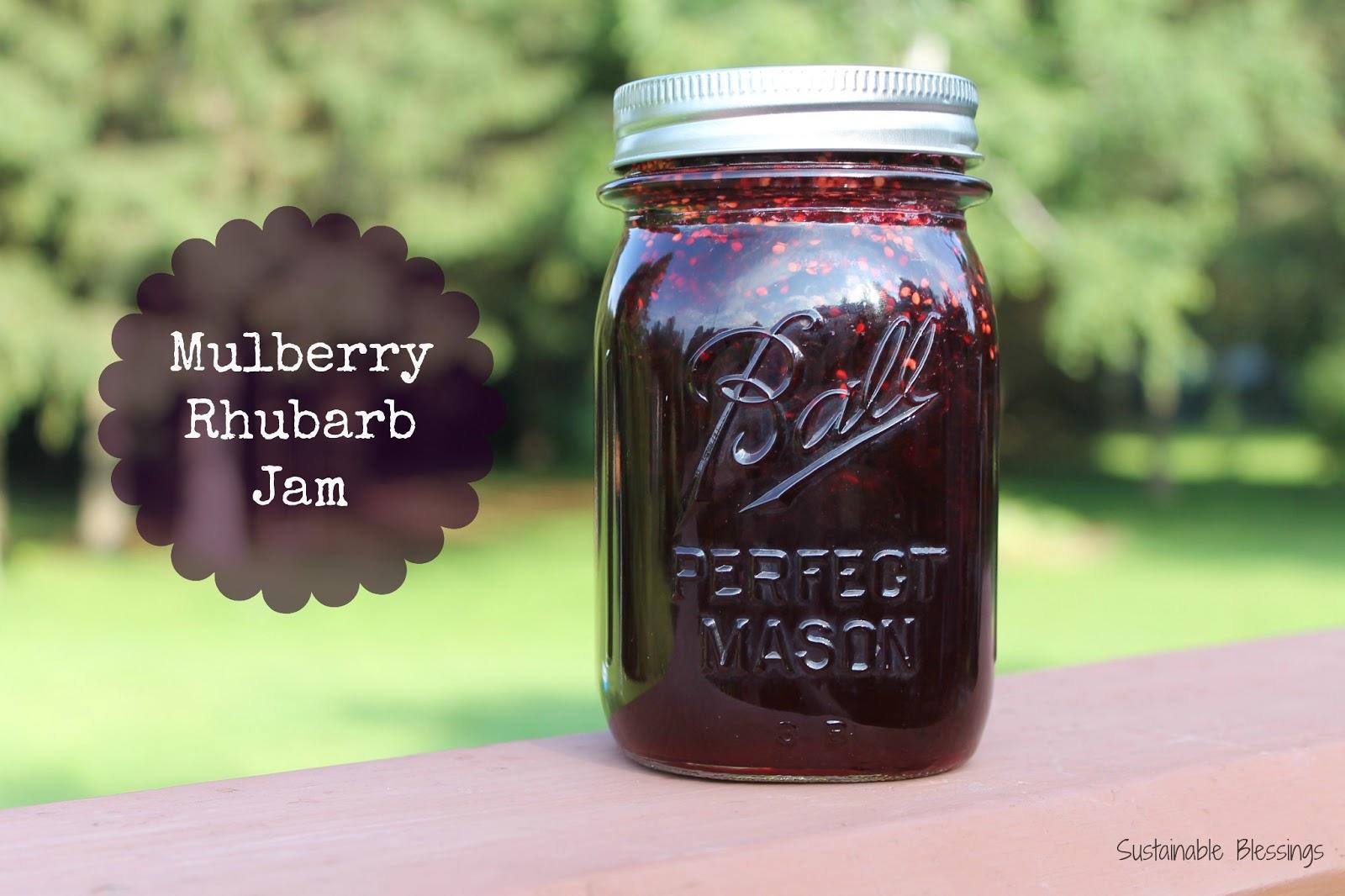Mulberry Jam Recipe — Dishmaps