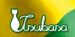 Tsubasa Imamura Brasil