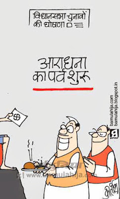 assembly elections 2013 cartoons, election 2014 cartoons, election cartoon, voter, indian political cartoon, festival