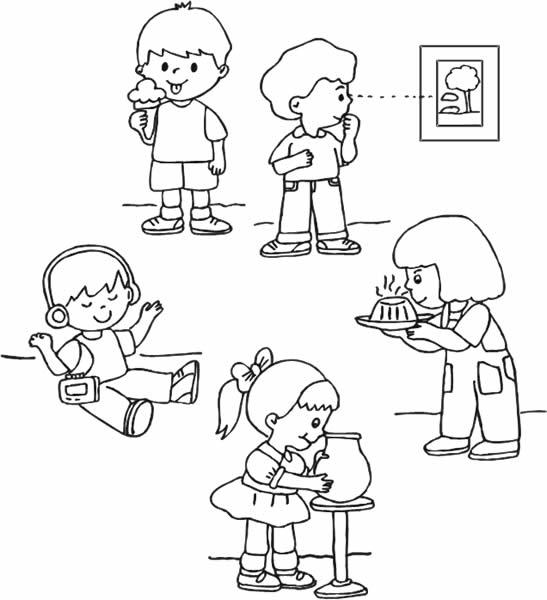 Organos de los sentidos para colorear para niños de inicial - Imagui