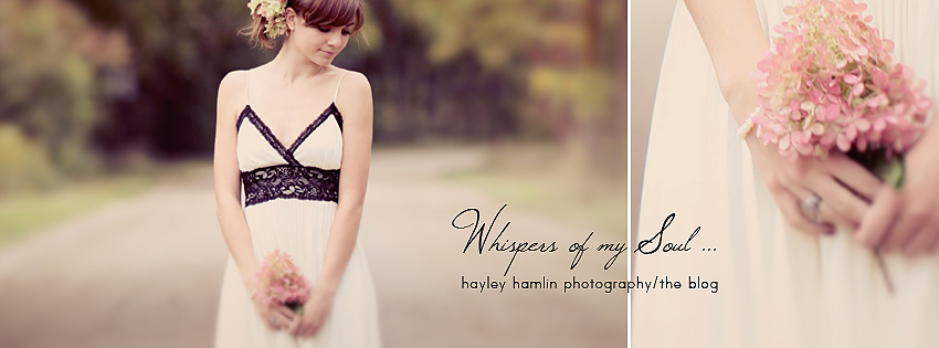 Hayley Hamlin Photography/The Blog