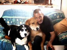 Famille de chien 2