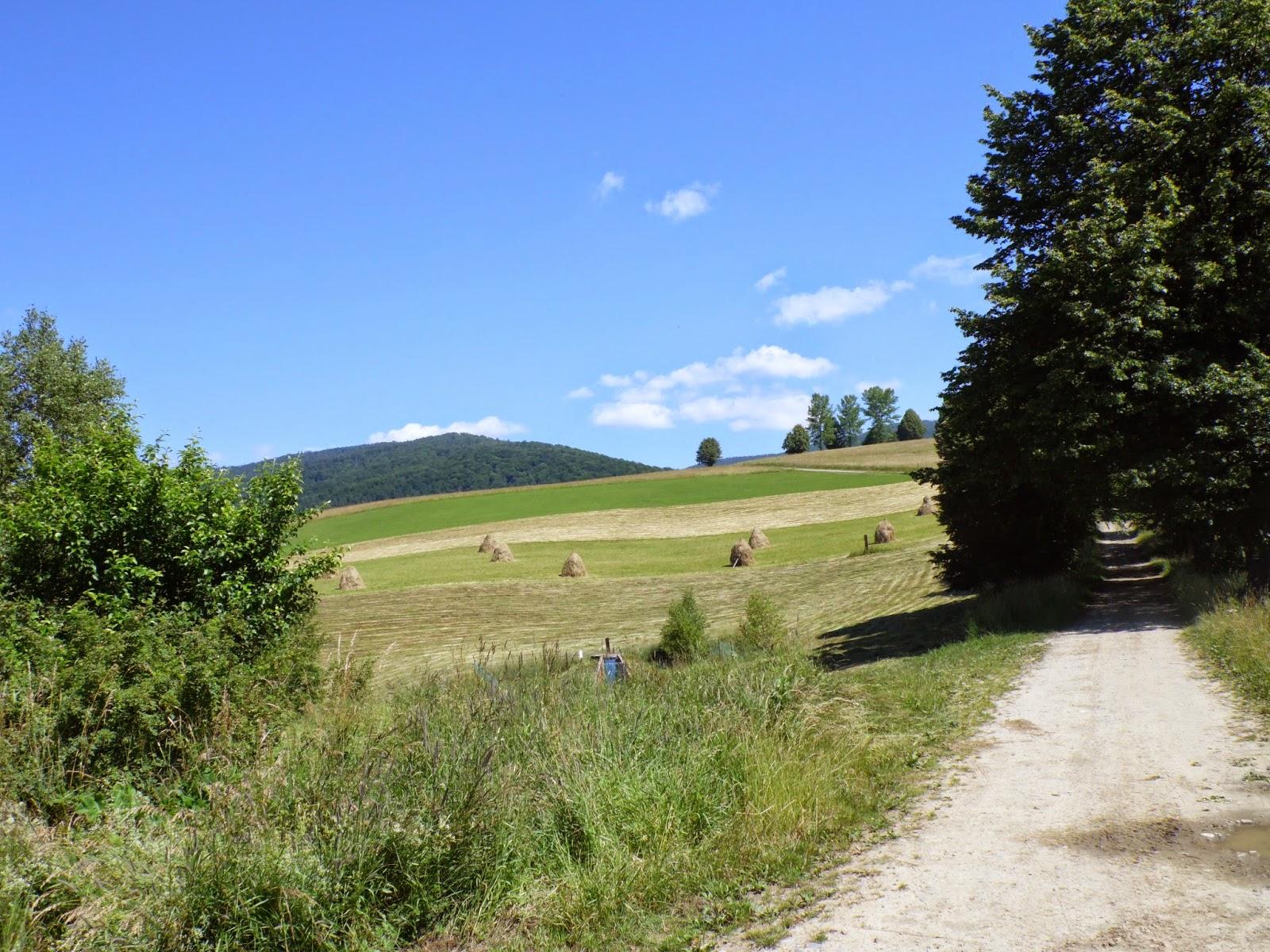 Tradycyjne wiejski krajobraz między Muszyną a Jaworzyną Krynicka