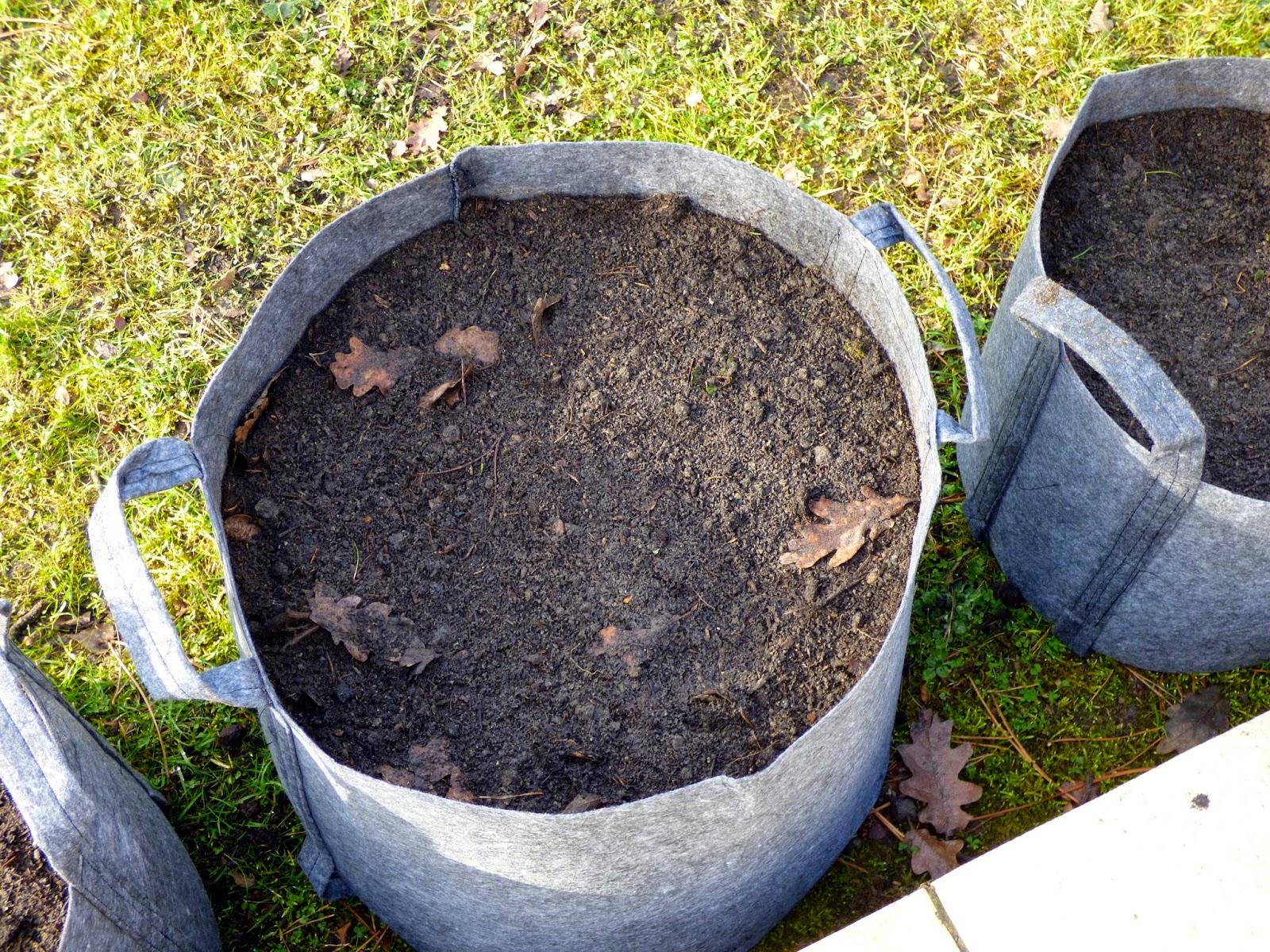 Une semaine paris for t jardiner le d fi potager 2 le jardin en bacs textile - Arrosage gazon apres semis ...