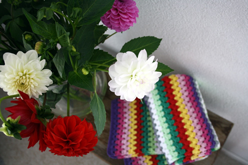 Granny stripe blanket dahlias