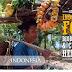 JAVARA, Penjaga Biodiversitas Pangan Indonesia