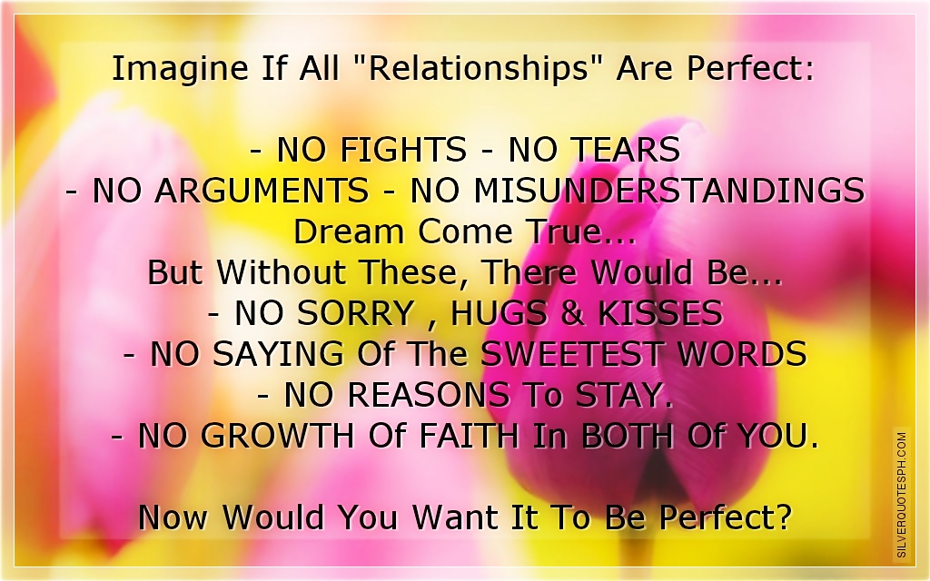 Imagine If All Relationships Are Perfect - SILVER QUOTES