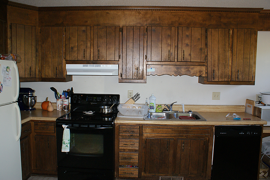 The Great Kitchen Remodel: Stage 1 - Natural Greenville SC Newborn ...