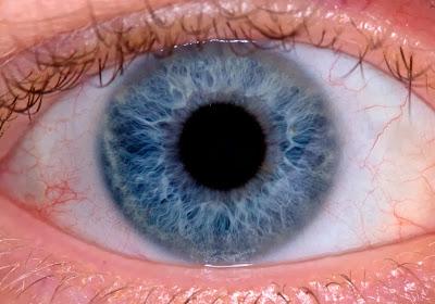 how to photograph human eye