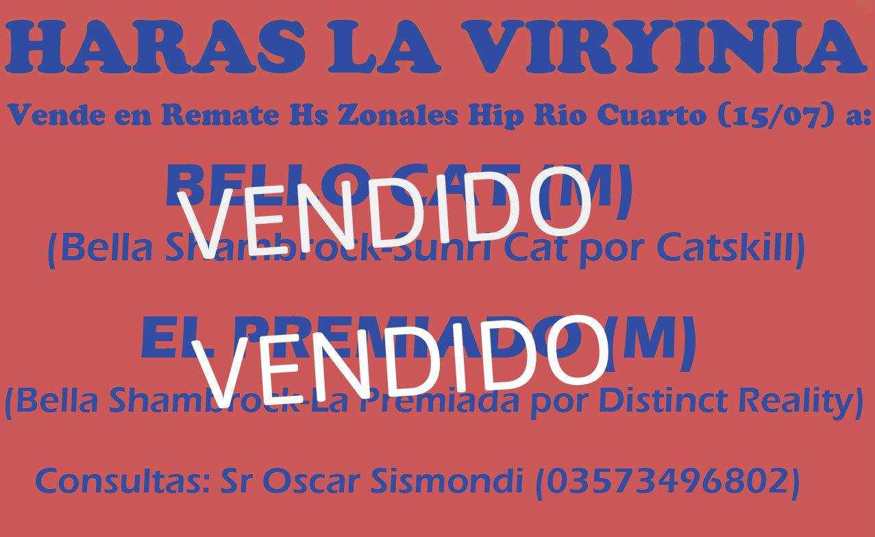 HS LA VIRYINIA