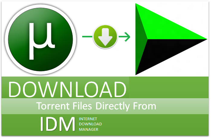 Learn How To Download Torrent Files With IDM