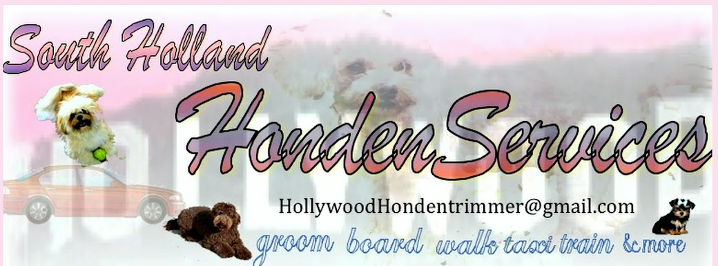 Hollywood Hondentrimmer and Dog Services