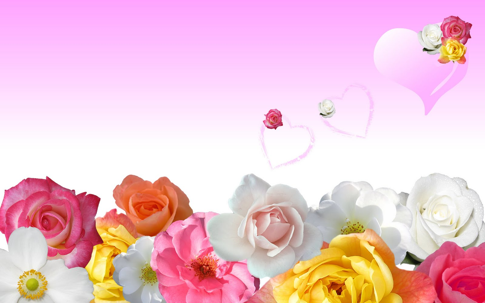 3d wallpapers: hd flowers wallpapers free download