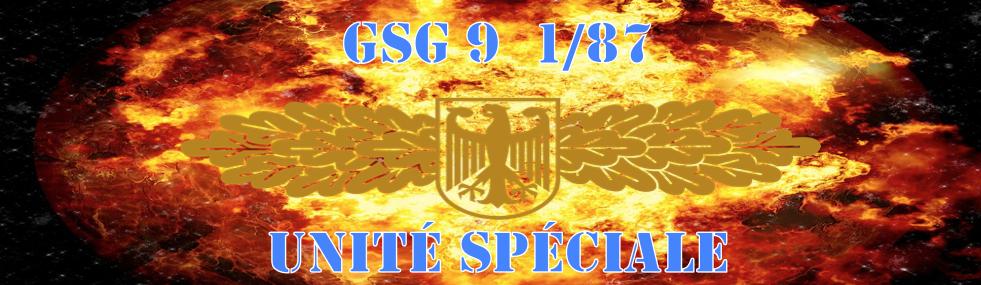 Gsg9 1/87 Unité spéciale