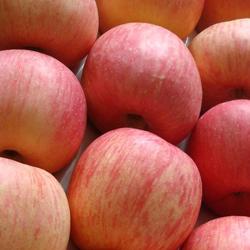 [imagetag manfaat buah apel]