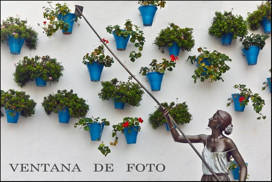 VENTANA DE FOTO