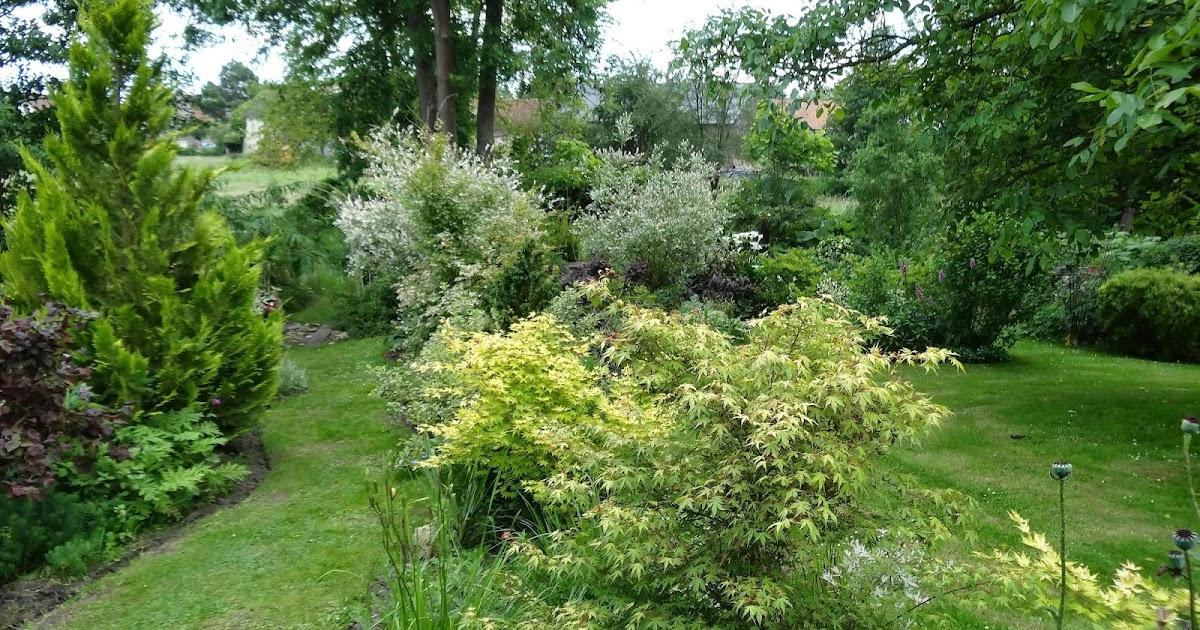 Le blog de parcs et jardins de l 39 oise un jardin ouvert au for Alexandre jardin nu