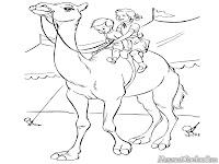 Anak-Anak Menunggang Unta Sirkus