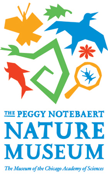 Peggy Notebaert Nature Museum Volunteer