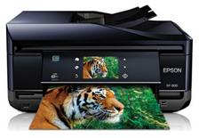 Epson Expression Premium XP 800 Driver Download