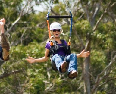 Piiholo Zipline Tour and tickets