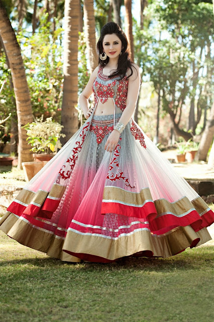 An Evening Party or Wedding Function Lehenga Choli @ Anarkali Suit
