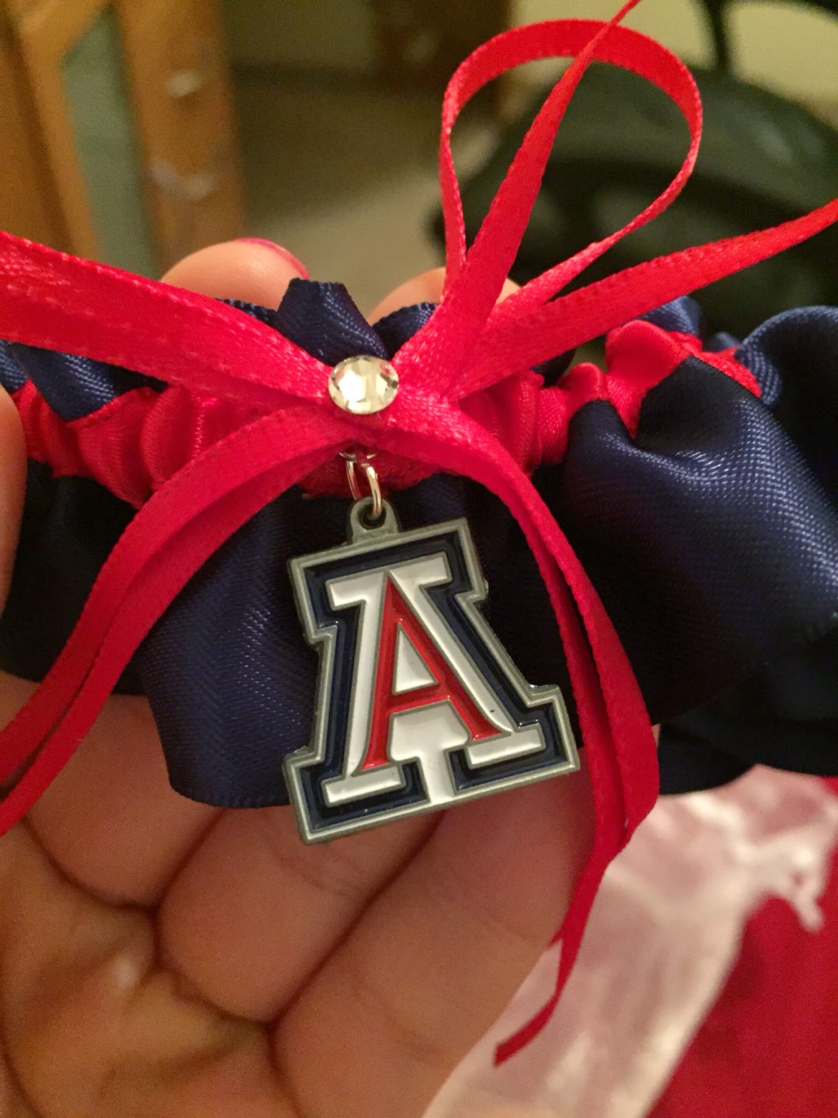 University of Arizona Wildcats Wedding Garter by Sugarplum Garters