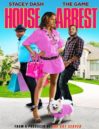 House Arrest – DVDRIP SUBTITULADO