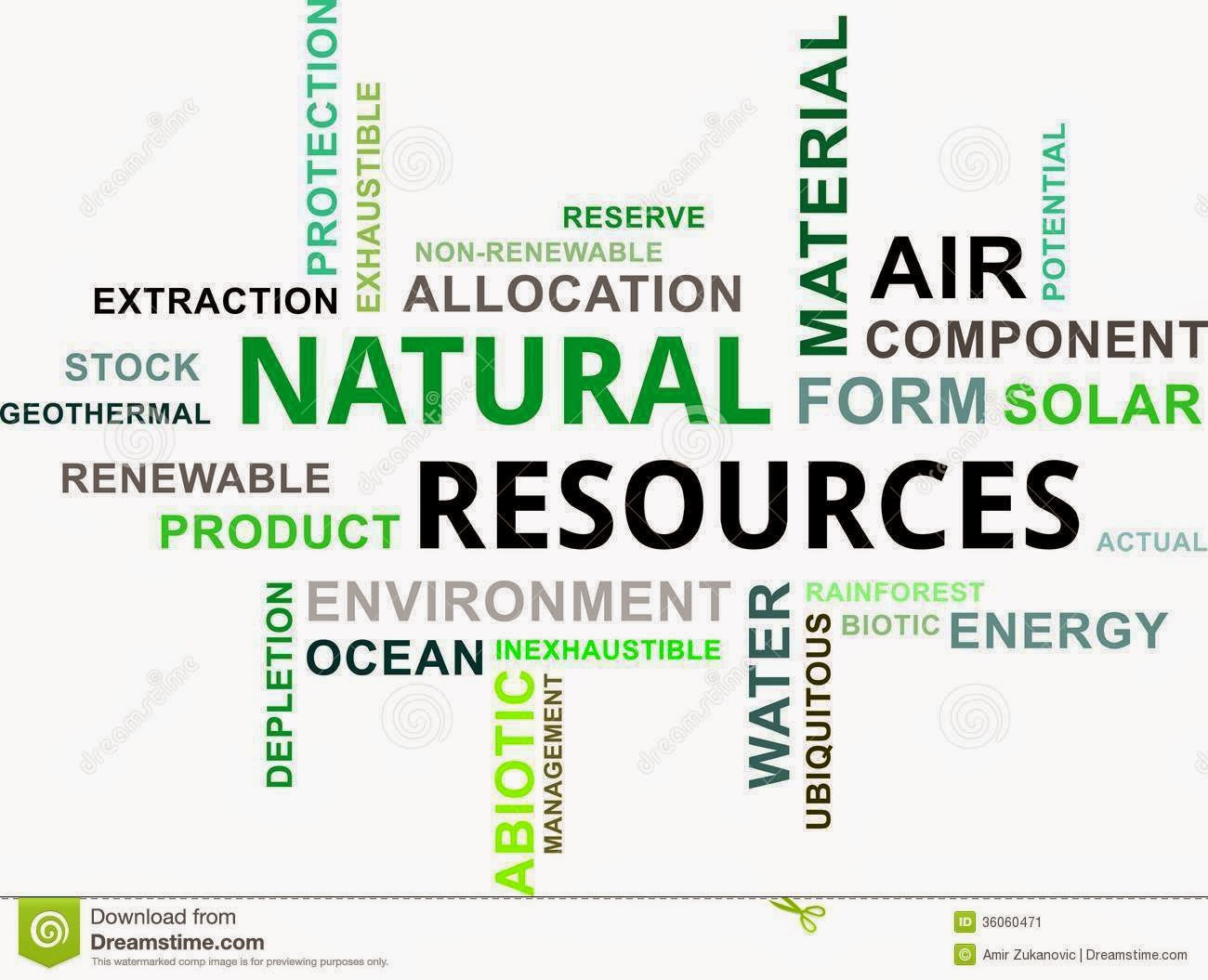 Natural Resources Essay Sample