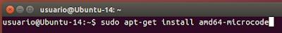 sudo apt-get install amd64-microcode