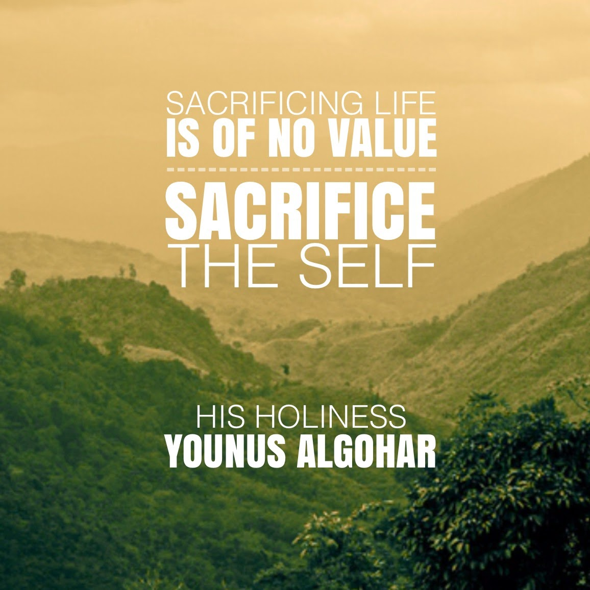Life Sacrifice Quotes The Official Mfi® Blog Quote Of The Day Sacrificing Life Is Of