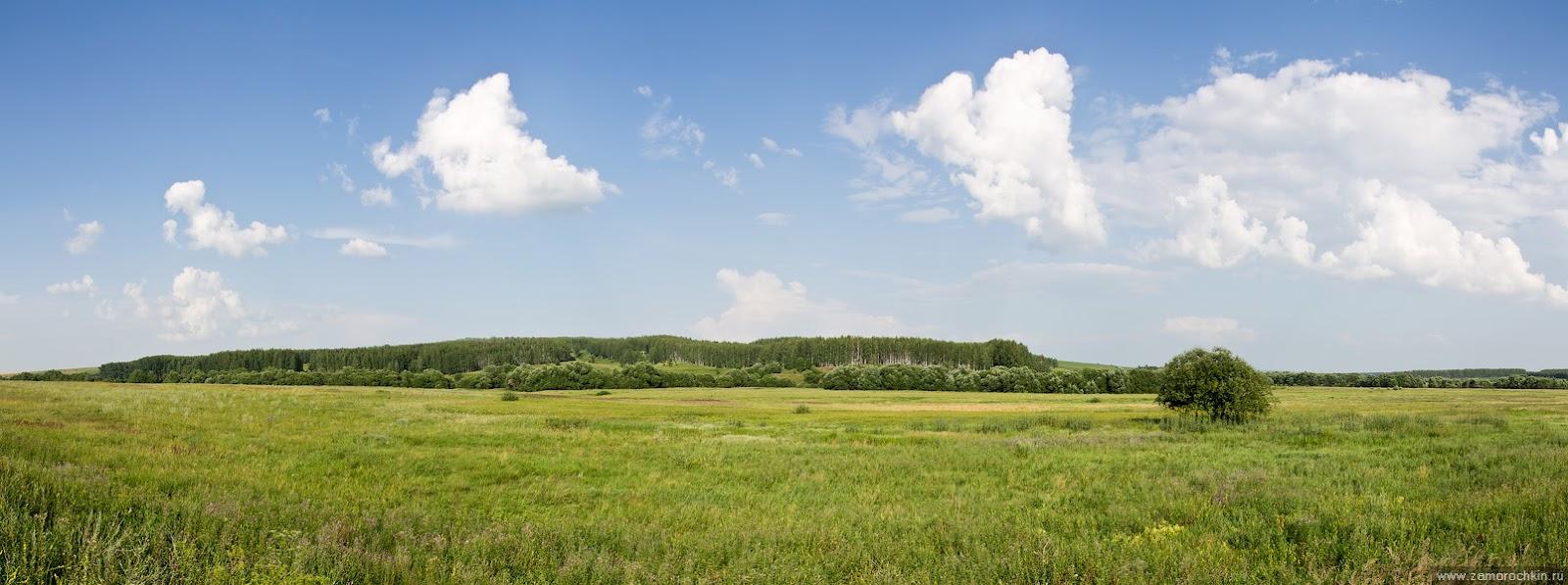 Пейзаж близ села Новые Турдаки (панорама из 5 кадров)